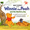 3953 Winnie the Pooh and the Blustery Day
